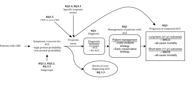 Analytic framework of the interpretation of troponin as a cardiac marker among patients with chronic kidney disease (including those with end-stage renal disease) and suspected acute coronary syndrome. The figure is an analytic framework of the key questions one through three. From left to right, it begins with patients with CKD, which points to symptoms, concerns for ACS and below has high pretest probability and low pretest probability. There is also an arrow pointing to the symptoms, concerns for ACS to indicate Subgroups for key question 1.2, 2.2, and 3.2. Then, there is an arrow labeled Troponin assay and has two arrows pointing to it and three pointing from it. The two pointing to it are labeled KQ1.5 CKD versus non-CKD and KQ1.4, KQ3.3 specific troponin assays. One of the arrows pointing away from Troponin assay is a wavy arrow pointing to a circle that has Harms of over-diagnosing ACS KQ1.3 inside. Then, there is another arrow pointing from Troponin assay over to KQ3 prognosis in suspected ACS. The third arrow from Troponin assay is straight to a rounded-edge box labeled KQ1 diagnosis with Diagnostic accuracy ACS, no ACS inside. Then a dotted straight arrow points to another rounded-edge box to the right labeled KQ2 management of patients with ACS that has Patient management, early invasive strategy, early conservative strategy inside. Then, a straight, dotted arrow points from that box to a straight-edge box labeled KQ3 prognosis in suspected ACS that has long term, greater than a year outcomes of MACE and all-cause mortality, and short term, less than a year outcomes of MACE and all-cause mortality.