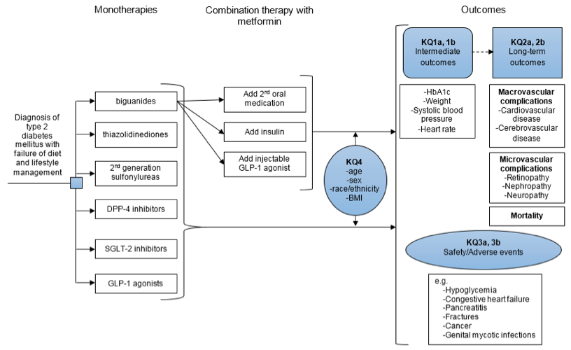Figure 1 displays the conceptual model. Patients with type 2 diabetes for whom diet and lifestyle management have failed are treated with monotherapy. Monotherapies include biguanides, thiazolidinediones, sulfonylureas, DPP-4 inhibitors, SGLT-2 inhibitors, and GLP-1 agonists. Some patients are treated with combination therapy, which could include the addition of a second oral agent, insulin, or a GLP-1 agonist. Outcomes were categorized as intermeiate outcomes (addressed in KQ1a and 1b), long-term outcomes (addressed in KQ2a and 2b), safety/adverse events (addressed in KQ3a and 3b). Intermediate outcomes include hemoglobin A1c, weight, systolic blood pressure, and heart rate. Long-term outcomes inlcude macrovascular complications (cardiovascular or cerebrovascular disease), microvascular complications (retinopathy, nephropathy, and neuropathy), and mortality. Safety and adverse events include hypoglycemia, congestive heart failure, pancreatitis, fractures, cancer, and genital mycotic infections.
