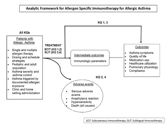 Figure 1. This figure depicts the key questions (KQs) within the context of the PICOTS and subgroups described in the previous section. In general, the figure illustrates how immunotherapy administered to patients with allergic asthma may result in intermediate outcomes such as changes in immunologic parameters and/or outcomes such as improvement of symptoms and quality of life and reduction of medication use. In addition, adverse events may occur at any point after treatment is received.