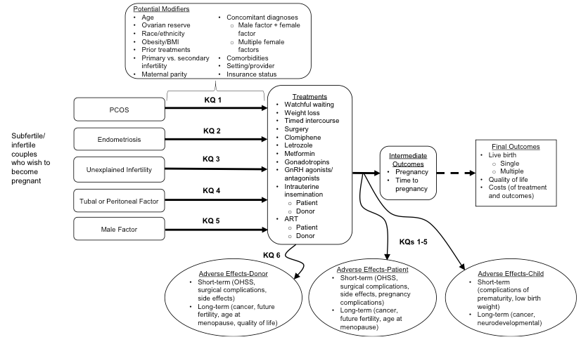 Figure 1: This figure depicts the key questions within the context of the population, interventions, comparators, outcomes, timings, and settings (PICOTS) described in the previous section. In general, the figure illustrates how a wide range of treatments for infertility may result in intermediate outcomes such as pregnancy or time to pregnancy and/or final outcomes such as live birth (single or multiple), quality of life, or costs in couples with different underlying causes of infertility. A separate key question focuses on outcomes in female and male donors in infertility. Short- and long-term adverse effects may occur at any point during treatment and may affect donors, patients, and/or children. Optimal treatment strategies may vary by important patient characteristics and/or by setting/provider.