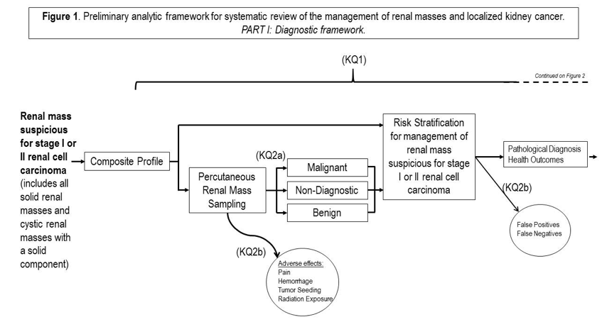 Figure 1. Preliminary analytic framework for systematic review of the management of renal masses and localized kidney cancer Part I: Diagnostic framework The figure shows the preliminary analytic framework which describes the diagnostic framework. Moving from left to right, there is text, arrows, boxes and circles that have text within and around. The first thing on the left shows the group with renal masses suspicious for stage I or II renal cell carcinoma. There is an arrow pointing to the composite outcomes. From here there are 2 arrows; the first arrow points to a box showing risk stratification for management of renal masses suspicious for stage I or II renal cell carcinoma; the second arrow points to a box containing the diagnostic method of percutaneous renal mass sampling. From here, there is an arrow that points down to a circle labeled adverse effects (pain, hemorrhage and tumor seeding) which denotes KQ2b. Also from percutaneous renal mass sampling box, three arrows point to three boxes (malignant, non-diagnostic and benign) which denotes KQ2a. From the three boxes, three arrows emerge and converge to point to the box earlier mentioned showing risk stratification for management of renal masses suspicious for stage I or II renal cell carcinoma. From here, an arrow points to a box (contains pathological diagnosis, health outcomes) and a circle (which contains False Positives and False Negatives) which denotes KQ2b.