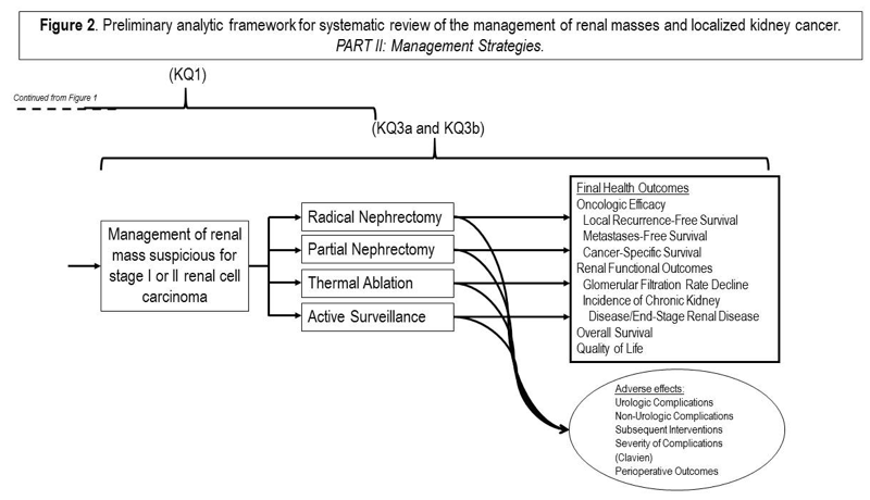 Figure 2. Preliminary analytic framework for systematic review of the management of renal masses and localized cancer Part II: Management strategies The figure shows the preliminary analytic framework which describes the management strategies framework. From the box mentioned above (containing pathological diagnosis, health outcomes), an arrow points to a box showing the management of renal mass suspicious for stage I or II renal cell carcinoma. From this box 4 arrows point to 4 boxes showing radical nephrectomy, partial nephrectomy, thermal ablation and active surveillance. From here, 2 sets of arrows arise; one pointing down to a circle labeled adverse effects (urological complications, non-urological complications, subsequent interventions, severity of complications , perioperative outcomes), and the second set of 4 arrows pointing to a box labeled final health outcomes (oncologic efficacy[local recurrence-free survival, metastases-free survival, cancer-specific survival], renal function outcomes [glomerular filtration rate decline, incidence of chronic kidney disease/end-stage renal disease], overall survival, quality of life). From the box showing the management of renal mass suspicious for stage I or II renal cell carcinoma to the box labeled