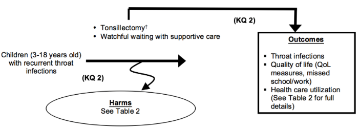 Figure 6 depicts Key Question 2 within the context of the patient, intervention, comparator, and outcomes (PICOS) parameters described in the document. Children between the ages of 3 and 18 years with recurrent throat infections may undergo tonsillectomy (which includes tonsillectomy, adenotonsillectomy, or partial tonsillectomy) or other treatment (medical treatments, watchful waiting). Outcomes resulting from treatment may include changes in the number and severity of throat infections annually; changes in health care utilization; and quality of life including missed school or work. Harms may occur at any point after the intervention is received and may include emergency room visits for bleeding, pain, dehydration, and nausea and vomiting.