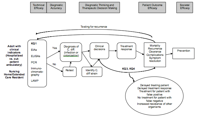 Figure 1 is a flow diagram illustrating the clinical path for patients with the potential to develop CDAD, from diagnostic laboratory tests, through their impact on treatment decisions, to finally implications for prevention strategies. It also locates the key questions of the review within the context of the framework. Diagnostic testing has two parts, the technical efficacy of the tests and diagnostic accuracy. After diagnostic accuracy, and treatment, and patient outcome efficacy, is prevention, a societal level efficacy measure, as the benefits of prevention of infectious disease can extend beyond the individual patient.