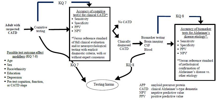 Figure 3. Analytic Framework for Key Questions 7-8: Accuracy, comparative accuracy and harms of diagnostic testing in patients with suspected CATD. This figure depicts key questions 7-8 within the context of the PICOTS described in the previous section. In general, the figure illustrates how cognitive tests may identify patients with clinically diagnosed CATD and how, in patients with clinically diagnosed CATD, biomarker tests may identify those with pathologically confirmed AD. It also illustrates how adverse events may occur. Finally, it illustrates how the accuracy of diagnostic testing may vary as a function of different patient characteristics (possible effect modifiers).