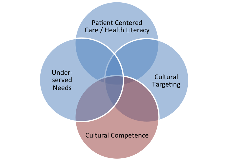Figure 1 is a Venn diagram with four circles depicting how several concepts used in health services research overlap. The concepts are cultural competence, underserved needs, cultural targeting and patient-centered care. The concepts are used by different research fields but do not necessarily convey a comprehensive or coherent taxonomy.