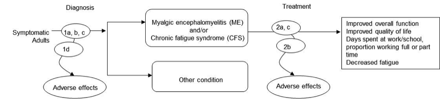 Figure 1 is an analytic framework that depicts the events involved in the diagnosis and treatment of symptomatic adults for Myalgic encephalomyelitis (ME) and/or chronic fatigue syndrome (CFS). The figure shows that symptomatic adults undergoing diagnosis may lead to a diagnosis of ME and/or CFS or to a to diagnosis of another condition. Diagnosis may potentially cause adverse effects. The figure then indicates that after diagnosis with ME and/or CFS patients may undergo treatment, which may lead to improved overall function, improved quality of life, more days spent at work or school, proportion working full or part time, and decreased fatigue. Treatment may also result in adverse effects.