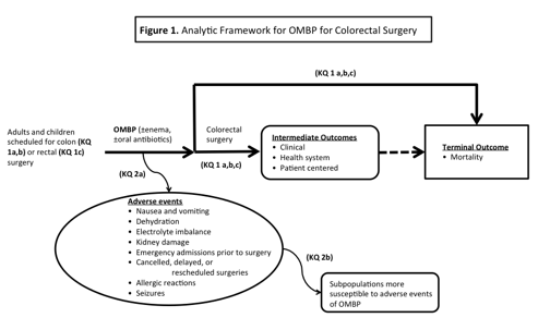 This figure depicts the Key Questions within the context of the PICO [Population, Intervention, Comparator, Outcome] criteria described in the previous section of the protocol. The figure illustrates how alternative OMBP strategies (including a strategy of no-OMBP) may affect outcomes among patients undergoing colon (KQ 1a and 1b) or rectal surgery (KQ 1c). The figure also incorporates the impact of alternative strategies on adverse events (KQ 2a) that may occur at any point during or after OMBP, and addresses the issue of patient subpopulations that may be particularly susceptible to such adverse events (KQ 2b).