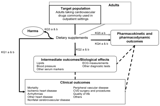 Figure 1 is an analytic framework that depicts the key questions for this review within the context of the population, treatment and outcomes of interest. The framework includes 7 sections. The first 6 include Target population, Treatment, Intermediate Outcomes/Biological effects, Clinical Outcomes, Harms and Pharmacokinetic and Pharmacodynamic Outcomes. The patient population of interest is adults taking cardiovascular drugs commonly used in the outpatient setting. The treatment is dietary supplements. The intermediate outcomes are utilized to determine if the treatment has an effect on biological outcomes and include lipids levels, blood pressure, ECG measurements, and other serum markers and diagnostic tests. The clinical outcomes include mortality, ischemic heart disease, arrhythmias and other heart disease, cerebrovascular disease, peripheral vascular disease, cardiovascular disease surgery and procedures, and quality of life. Harms of treatment include allergic reactions, significant bleeding, and neurological and gastrointestinal adverse events. Pharmacokinetic and pharmacodynamic outcomes include measures of drug absorption, distribution, metabolism, and excretion. The final heading is the adult population, within which the target population is included. This heading is included for Key Question 5, which proposes to examine clinical pharmacokinetic and pharmacodynamic studies of commonly used dietary supplements in the general adult population.
