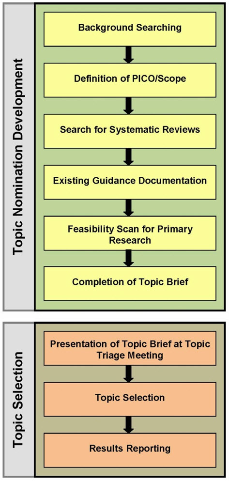 Figure 3. Topic nomination development and topic selection processes