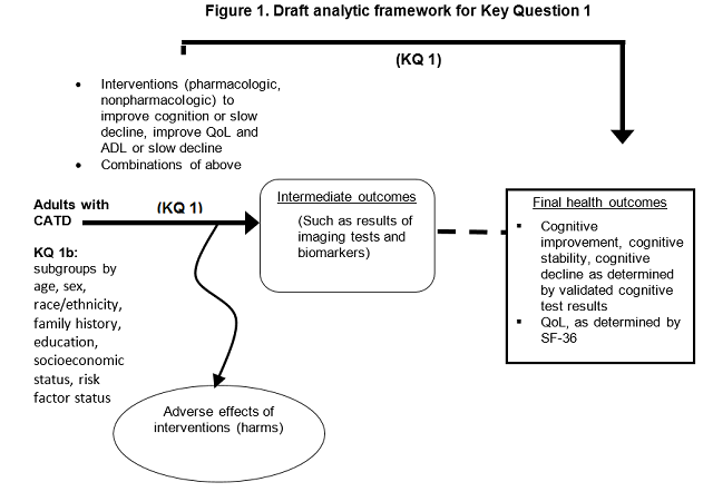 This figure depicts key question 1 within the context of the PICOTS described in the previous section. In general, the figure illustrates pharmacologic and non-pharmacologic interventions aimed at improving cognition or slowing decline, improving quality of life and activities of daily living or slowing decline in adults with Clinical Alzheimer's-type Dementia (CATD) may result in intermediate outcomes such as changes in biomarker protein level(s), brain matter volume, and brain cell activity level;  and/or long-term outcomes such as cognitive improvement, cognitive stability, cognitive decline as determined by validated cognitive test results and quality of life, as determined by SF-36.