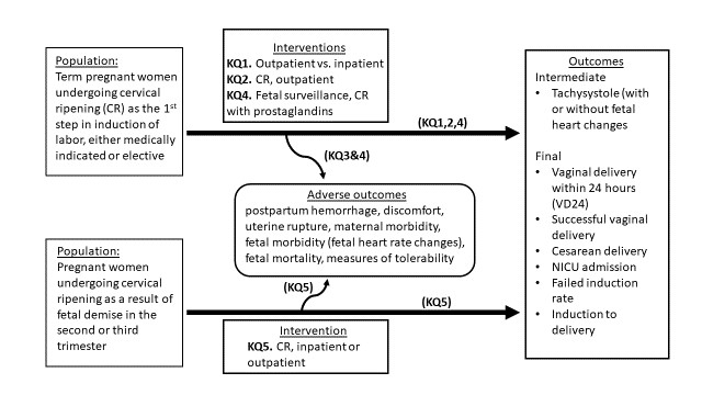 Figure 1: This figure is the draft analytic framework for methods of cervical ripening in labor induction in the outpatient setting. This figure depicts the key questions within the context of the PICOTS described below. In general, the figure illustrates how different cervical ripening methods, results in intermediates and final health outcomes and adverse outcomes. These cervical ripening methods are compared to each other, compared when used in the outpatient vs inpatient setting and compared to each other when a woman has a fetal demise. In addition, methods of fetal surveillance when using prostaglandins for cervical ripening factors are compared to each other, and preferences and tolerability of different methods is assessed.
