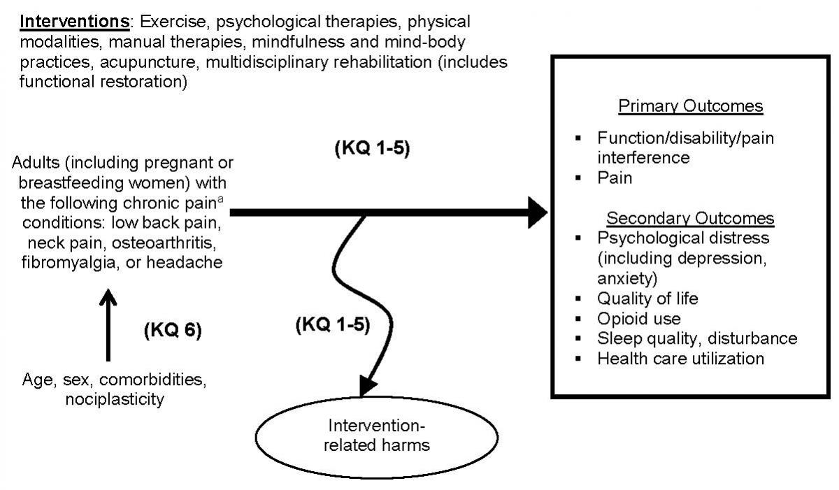 Figure 1 is an analytic framework that depicts the population, interventions, primary outcomes, secondary outcomes, and intervention-related harms, all elements to be addressed by Key Questions 1-5. The population is adults (including pregnant or breastfeeding woman) with the chronic pain conditions of low back pain, neck pain, osteoarthritis, fibromyalgia, or headache. Chronic pain is defined as pain lasting 12 weeks or more or pain persisting past the normal time for tissue healing. The interventions include exercise (physical therapy, supervised exercise, home exercise, group exercise), psychological therapies (cognitive behavioral therapy, acceptance and commitment therapy, biofeedback, relaxation training), physical modalities (traction, ultrasound, TENS, low level laser therapy, interferential therapy, superficial heat or cold, bracing for the knee, back, or neck, electro-muscular stimulation, magnets), manual therapies (manipulation, massage), mindfulness and mind-body practices (meditation, mindfulness-based stress reduction and similar practices, Yoga, Tai Chi, Qigong), acupuncture, and multidisciplinary/interdisciplinary rehabilitation (includes functional restoration). The primary outcomes are function/disability/pain interferences and pain. The secondary outcomes are pyschological distress (including depression, anxiety), quality of life, opioid use, sleep quality/disturbance and health care utilization.  Intervention-related harms are not specifically described. For Key Question 6, patient characteristics of age, sex, comorbidities, and nociplasticity are shown in relation to the population of adults with chronic pain conditions.