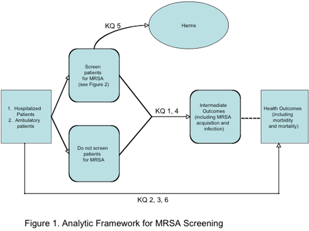 The figure depicts the effects of MRSA screening on intermediate outcomes (including MRSA acquisition and infection) and health outcomes (including morbidity and mortality).