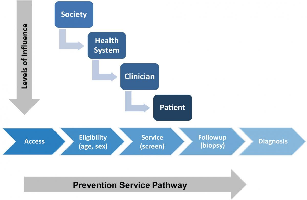 This figure is a conceptual diagram illustrating the levels of influence that different systems and factors have on the clinical pathway of prevention services. On the left side of the figure (y-axis), is an arrow and a series of boxes representing levels of influence including 1) society, 2) health system, 3) clinician factors, and 4) patient factors. Arrows indicate connections between influential factors at each level and how they may impact one another. Along the x-axis is the prevention services clinical pathway. This pathway includes a series of five connected arrows, each one representing a point along the prevention service pathway continuum. These points of care are influenced to varying degrees by the various levels of influence depicted on the y-axis. The first step involves gaining access to health care, encompassed by affordability (e.g., copays, deductibles, coinsurance payments), availability (e.g., enough providers in area, appointment availability), accessibility (e.g., geographic considerations, ease of travel to/from), accommodation (e.g., flexible work schedules, flexible clinic hours), and acceptability (e.g., racial/ethnic, gender considerations to foster patient-provider relationships). After accessing health care, eligibility for the prevention service must be determined by identifying risk factors or other criteria (e.g., age, sex); followed by delivery of the prevention service (e.g., screening test, counseling intervention); followup of abnormal results (e.g., biopsy after mammography); and either diagnosis of the targeted health condition or resumption of routine screening at specified intervals. Each step in the pathway represents a potential gap or barrier that might give rise to a disparity resulting in less preventive care for disadvantaged groups. Different prevention services present variations of this pathway.
