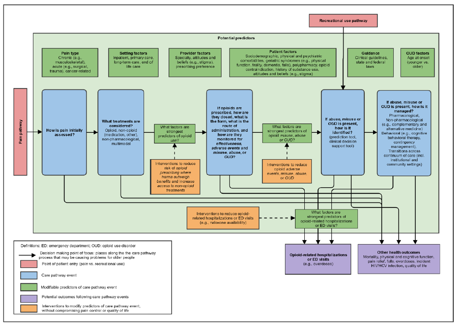 Figure 1 shows a global preliminary conceptual framework. It encompasses all Guiding Questions and places a slight emphasis on the interest areas most amenable to an evidence map such as risk factors for opioid-related events among all older adults and risk factors for harm among opioid users. The clinical care pathway events through which an older adults may progress are shown in blue with temporal ordering. The decision-making points that may lead to the events are depicted by arrows, and factors or predictors that may be contributing to many aspects of opioid use and misuse in older adults are shown in green. The large shaded green box encompassing much of the figure indicates the broad influence of the factors on many parts of care management. Patient-, medication-, provider- and other factors are all included and represented in green. Since older adults may initially engage in opioid use through either pain or recreational pathways, both are included and identified in red. Orange boxes with dashed arrows are used to show where interventions may be particularly appropriate along the care pathway. Finally, the purple boxes identify health outcomes.