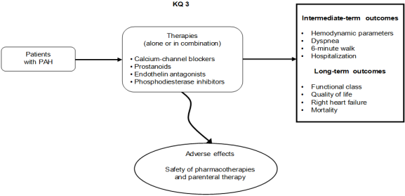 Figure 2. This figure depicts Key Question 3 within the context of the PICOTS. In general, the figure illustrates therapies (i.e., prostanoids, endothelin antagonists, phosphodiesterase inhibitors) alone or in combination for adults diagnosed with PAH. Key Question 3 also considers intermediate patient outcomes (e.g., pulmonary artery pressure, dyspnea, 6-minute walk) and long-term patient outcomes (e.g., functional class, quality of life, right heart failure, mortality) as well as adverse effects associated with PAH therapies (e.g., liver function abnormalities, increased prothrombin time and international normalized ratio, headache, bleeding, peripheral edema, gastrointestinal symptoms, and dizziness or syncope).