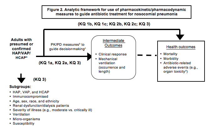 Figure 2 is titled Analytic framework for use of pharmacokinetic/pharmacodynamic (PK/PD) measures to guide antibiotic treatment for nosocomial pneumonia. The framework begins on the left with our patient population of interest: adults with presumed or confirmed HAP/VAP/ HCAP. The first arrow representing Key Questions 1b and c, 2b and c, and 3 is an overarching arrow that starts from the patient population and crosses over the entire framework, going to a box on the far right, containing the words Health Outcomes, with these three bulleted items: mortality, morbidity and antibiotic-related adverse events (e.g., organ toxicity). A horizontal arrow starting at the same point, representing Key Questions 1a, 2a, and 3, with the words PK/PD measures to guide decisionmaking points to a box in the center of the framework containing the words Intermediate Outcomes: Clinical Response with these two bulleted items: Clinical Response and Mechanical Ventilation (occurrence and length). A dotted arrow goes from this center box to a box on the far right labeled Health Outcomes (the same Health Outcomes box that KQ1b, KQ1c, KQ2b, KQ2c, and KQ3 goes to). A thick arrow descends from the patient population listing on the far left and is labeled KQ3 to denote the subgroups of interest: HAP, VAP, or HCAP; immunocompromised; age, sex, race, or ethnicity; renal dysfunction/dialysis patients; severity of illness; microorganisms; and susceptibility.
