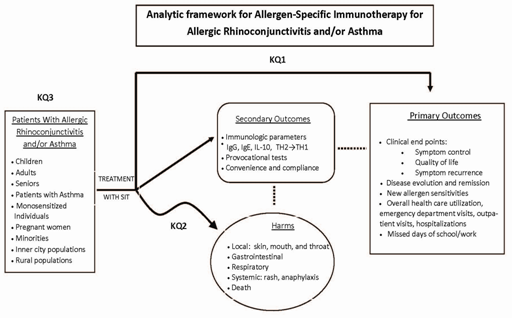 Figure 1. This figure depicts the key questions (KQs) within the context of the PICOTS described in the previous section. In general, the figure illustrates how allergen-specific immunotherapy, administered to patients with respiratory allergies, may result in intermediate outcomes (e.g., changes in immunologic parameters) and/or long-term outcomes (e.g., improvement of symptoms and quality of life and reduction of health care costs). In addition, adverse events may occur at any point after treatment is received.