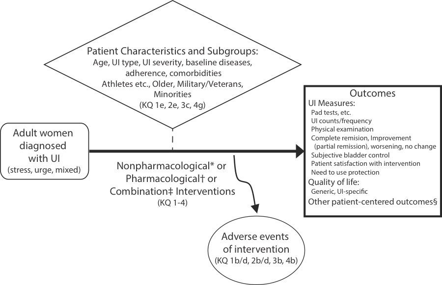 Figure 1: The analytic framework summarizes the Key Questions within the context of the eligibility criteria. The figure diagrammatically shows that adult women diagnosed with urinary incontinence (whether stress, urge, or mixed) may be treated with nonpharmacological, pharmacological, or combination interventions. The evaluations of these interventions are addressed by key question 1 to 4. The nonpharmacological interventions are listed in the footnote * and the pharmacological interventions are listed in the footnote †. Combination interventions are combinations of eligible nonpharmacological and pharmacological interventions (as noted in footnote ‡). These interventions can result in adverse events, which are addressed by key questions 1b, 1d, 2b, 2d, 3b, and 4b. The effects and adverse events of the interventions may be modified by patient characteristics and subgroups. These are listed as age, urinary incontinence type, urinary incontinence severity, baseline diseases, adherence, comorbidities, athletes etcetera, older women, military and veteran women, and minorities. The differences in effect and adverse events by patient characteristics are addressed by key questions 1e, 2e, 3c, and 4g. The outcomes of interest include urinary incontinence measures, which include pad tests etcetera, urinary incontinence counts and frequency, physical examination, complete remission, improvement (i.e., partial remission), worsening, no change, subjective bladder control, patient satisfaction with intervention, and need to use protection; quality of life, including generic and urinary incontinence-specific measures; and other patient-centered outcomes. As noted in footnote §, other patient-centered outcomes will be based on findings of the contextual question.