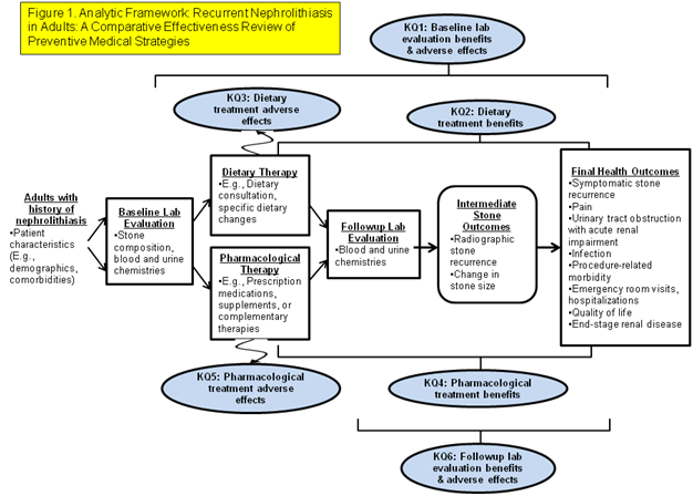Figure 1. Analytic Framework. This figure depicts the key questions of this comparative effectiveness review in the context of the population, interventions, comparators and outcomes. Adults with a history of nephrolithiasis may have either dietary therapy and/or pharmacological therapy. Follow-up laboratory evaluation may be performed. Treatment may result in adverse effects; intermediate outcomes, such as radiographic stone recurrence, or change in stone size; and final health outcomes, such as symptomatic stone recurrence, pain, urinary tract obstruction with acute renal impairment, and infection.