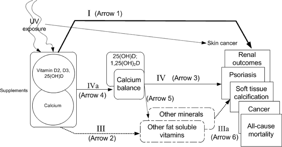 This figure depicts the proposed relationships between vitamin D and calcium exposure and potential adverse events, that is, the effects of upper levels of intake. The association between vitamin D and calcium exposures and clinical outcomes of interest is shown as arrow 1 (key question 1). The association between indicators of exposure and clinical outcomes is shown as arrow 3 (key question 3). The association between exposures and indicators of exposures is shown as arrow 4 (key question 4).