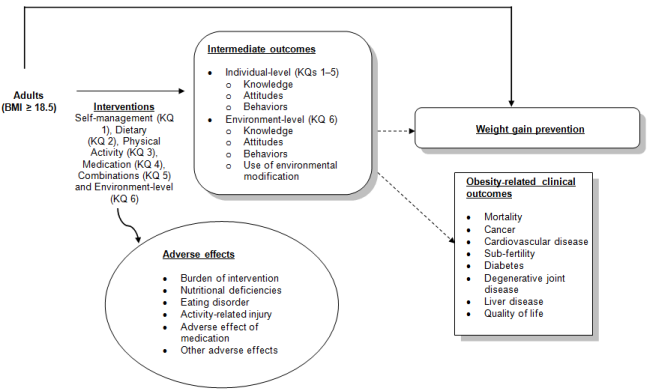 Figure 1 is our analytic framework, presenting the Key Questions in terms of the interventions of interest, self-management (KQ1), dietary (KQ2), physical activity(KQ3), medication (KQ4), combinations of these 4 (KQ5), and environment-level interventions (KQ6) and how these impact outcomes related to adult weight maintenance. The population of interest is adults with a BMI greater than or equal to 18.5. Intermediate outcomes of the interventions include knowledge, attitudes and behaviors for KQs 1-5 and the additional intermediate outcome of use of environmental modification for KQ6. Weight maintenance primary outcomes include all measures of weight gain prevention. Obesity-related clinical outcomes include mortality, cancer, cardiovascular disease, diabetes, degenerative joint disease, liver disease and quality of life.